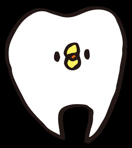歯 イラスト